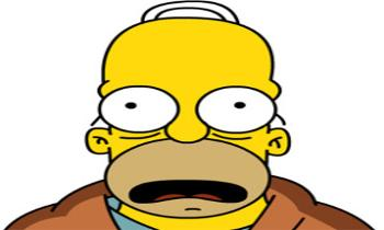 Mr Homer Simpson